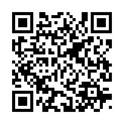 d8134-86-358904-4