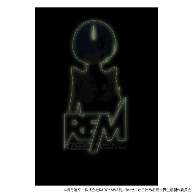 re0_cospa01-07
